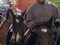 El camino Horse Jurásico