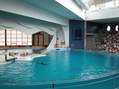 The Marine Mammal Pavilion At The National Aquarium