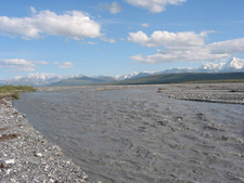 The McKinley River