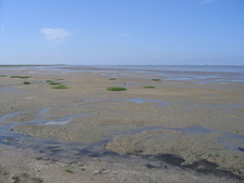 The Mudflats Of The Pilsumer Watt Near Greetsiel