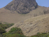 The Mukurthi Peak