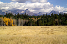 The North Fork - Glacier - Montana - USA