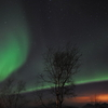 The Northern Lights Near Tromsø