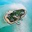 The Palm Tree Island