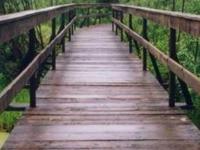 La Pasarela Camino - Parque Nacional de Narew