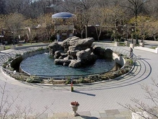 The Sea Lion Pool In The Zoo