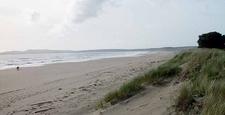 The Shore At Limantour Beach