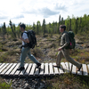 The Tanalian Trail