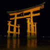 The Torii At Night