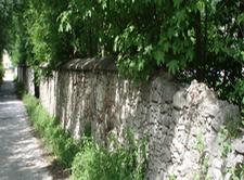 Thiergarten Wiesing Austria
