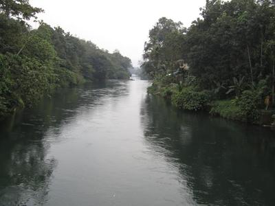 Thodupuzha River