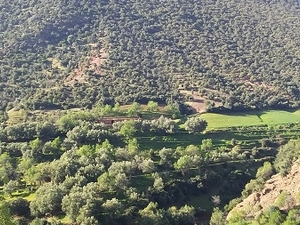 To Do in Ouirgane - Day Excursions The Berber Village to Ouirgane Valley Photos