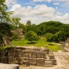 Tikal Archaeological Ruins Site