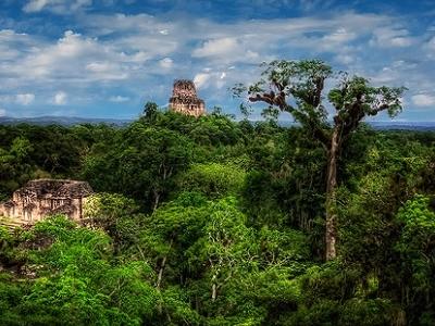 Tikal Overview - Peten Dept.