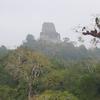 Tikal Temple IV - Tikal - Guatemala