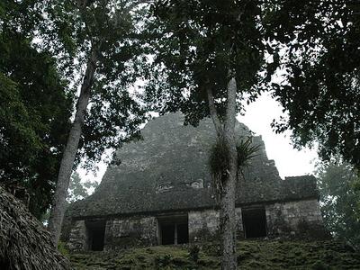 Tikal Temple VI - Tikal - Mexico
