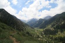 Timber Gap Trail