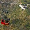 Timber Trail At Parwanoo