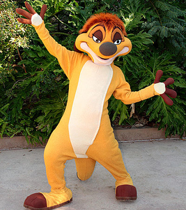 Timon Disneys Animal Kingdom