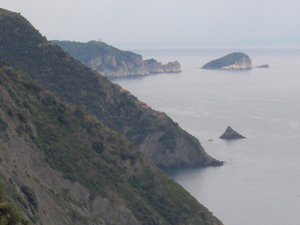 Tinetto Isla