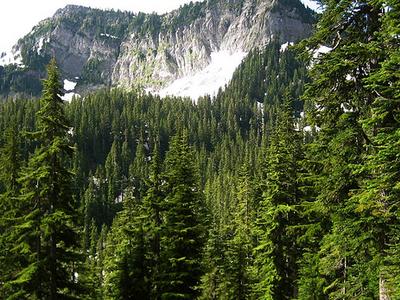 Tinkham Mountain - Montana - USA