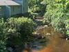 Tioga River