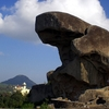 Toad Rock On A Hill Near The Nakki Lake