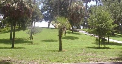 Tocobago Mound