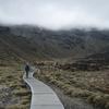 Tongariro Conservation Area Views