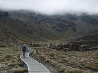 Tongariro Área de Conservación Forestal