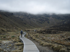 Tongariro Conservation Area Views