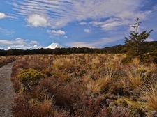 Tongariro National Park View - North Island NZ