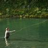 Tongariro River Fly Fishing