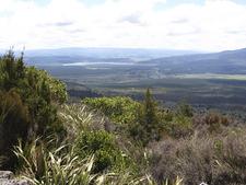Tongariro Shrubland