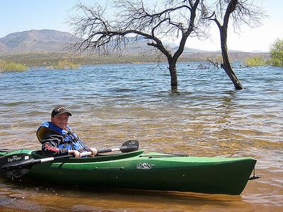 Tonto Basin Visitor - Arizona