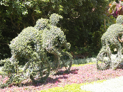 Topiary Park Cyclists
