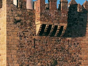 Torre de Bujaco