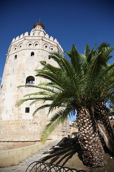 Torre Del Oro With Rree