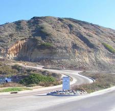 Torrey Pines Roadway