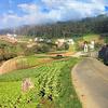Tourist Attractions In Quetzaltenango