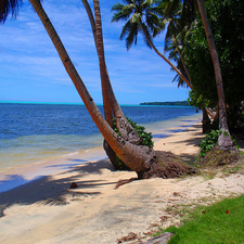 Tourist Attractions In Yap Islands