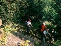 Tourist bicycle route around Piła PI-7004y