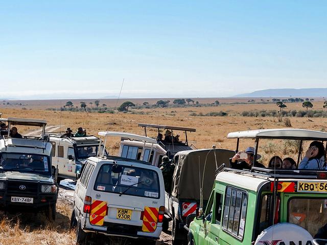 4 Days Masai Mara Luxury Safari Photos