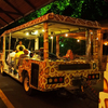 Tourist Rides At Night Safari, Singapore