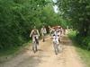 Tourist Trail Strękowa Góra - Łaś Toczyłowo