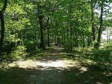 Trail Inside Presque Isle State Park - Erie PA