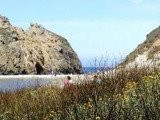 Trails At Pfeiffer Beach