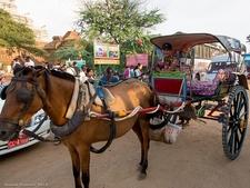 Transport In Bagan - Myanmar