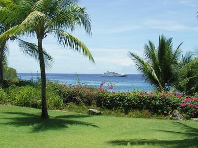 Tropical  Area  Mactan  Philippines