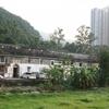 Tsang Tai